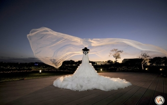 """Let's fly away…"" 