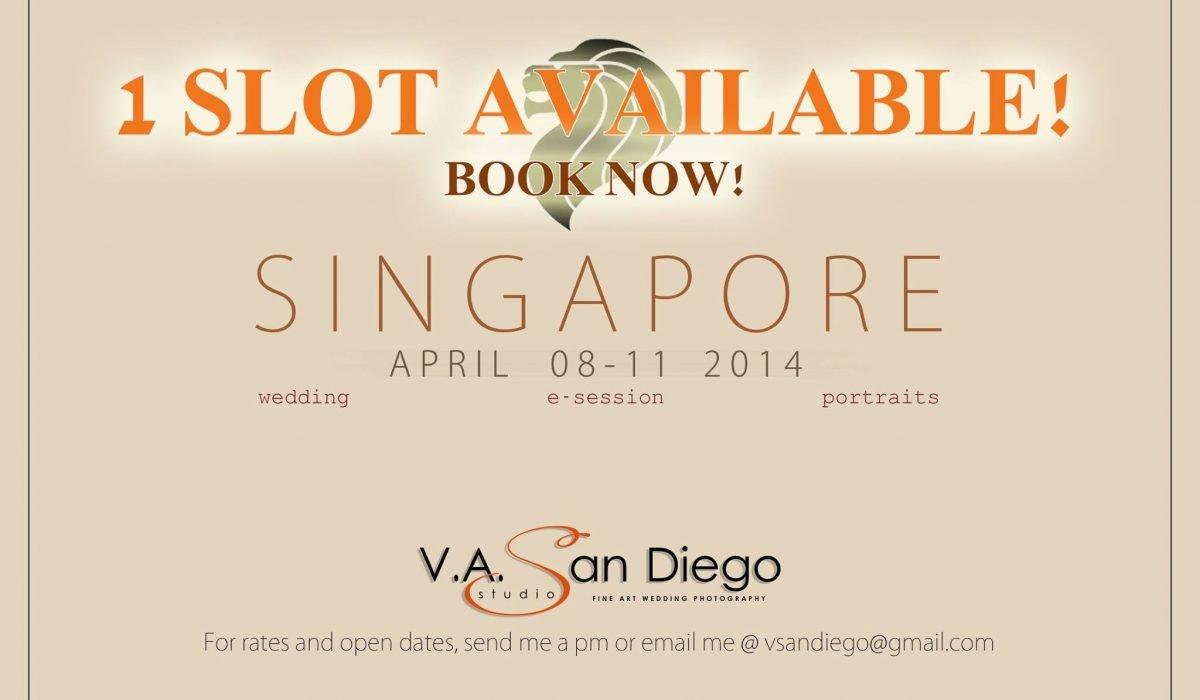 1 vacant slot available! #VAsandiegoStudio #singapore